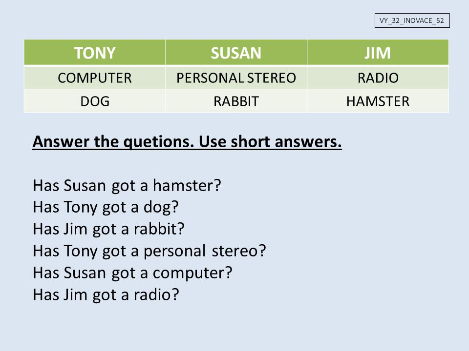 Answer the quetions. Use short answers. Has Susan got a hamster