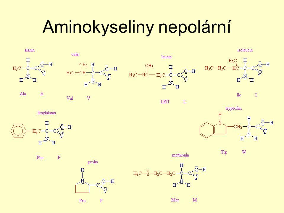 Aminokyseliny nepolární