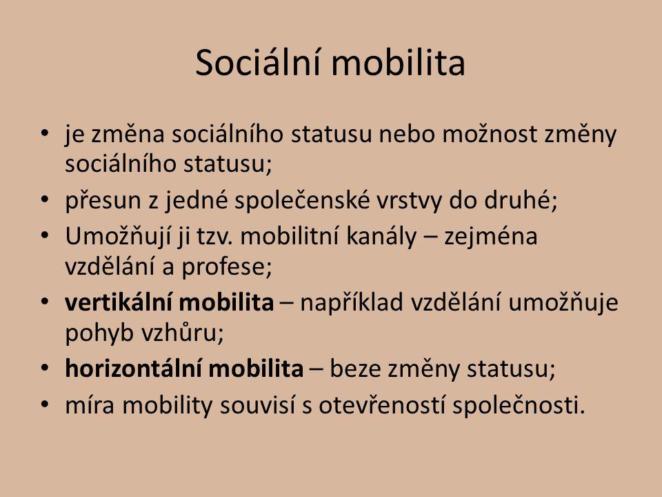 Sociální mobilita je změna sociálního statusu nebo možnost změny sociálního statusu; přesun z jedné společenské vrstvy do druhé;