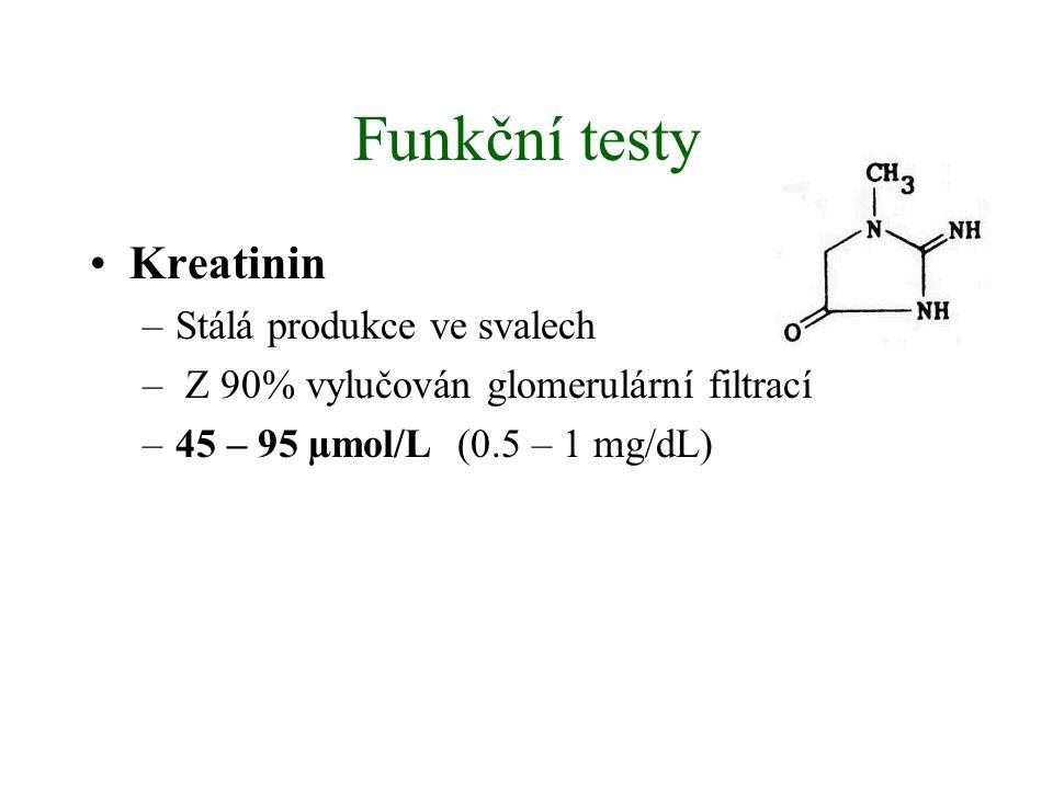 Funkční testy Kreatinin Stálá produkce ve svalech