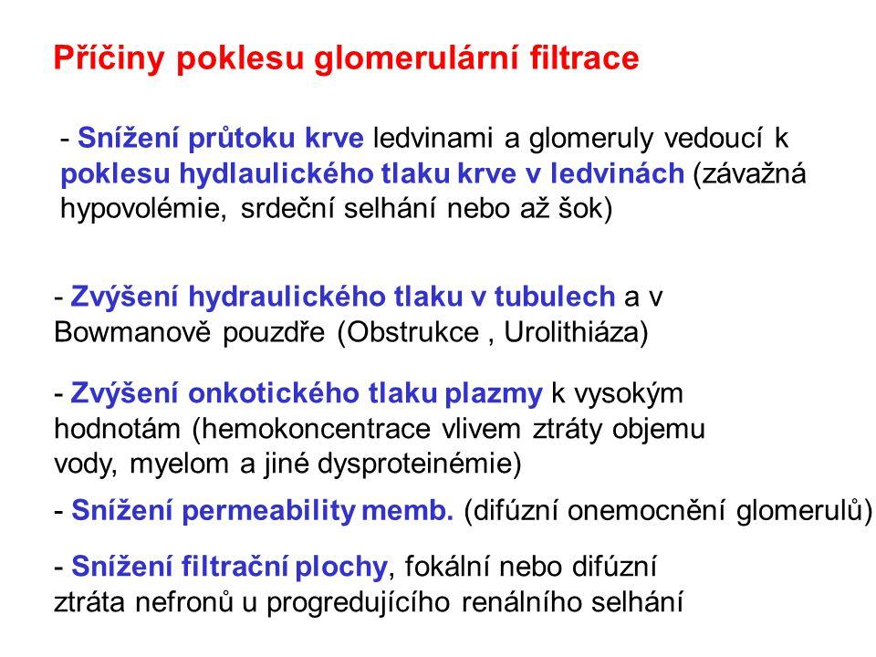 Příčiny poklesu glomerulární filtrace
