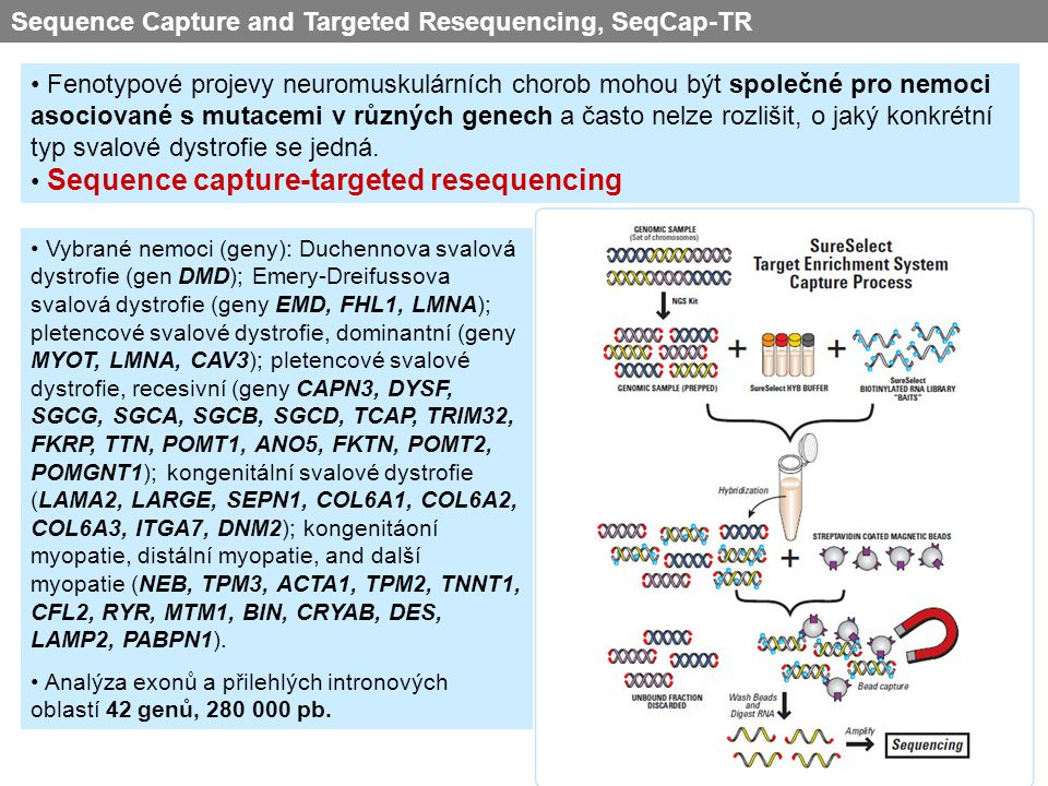 Sequence Capture and Targeted Resequencing, SeqCap-TR