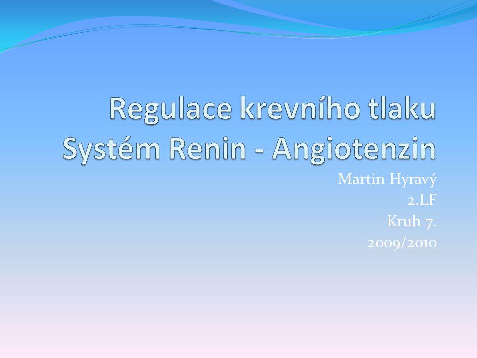Regulace krevního tlaku Systém Renin - Angiotenzin