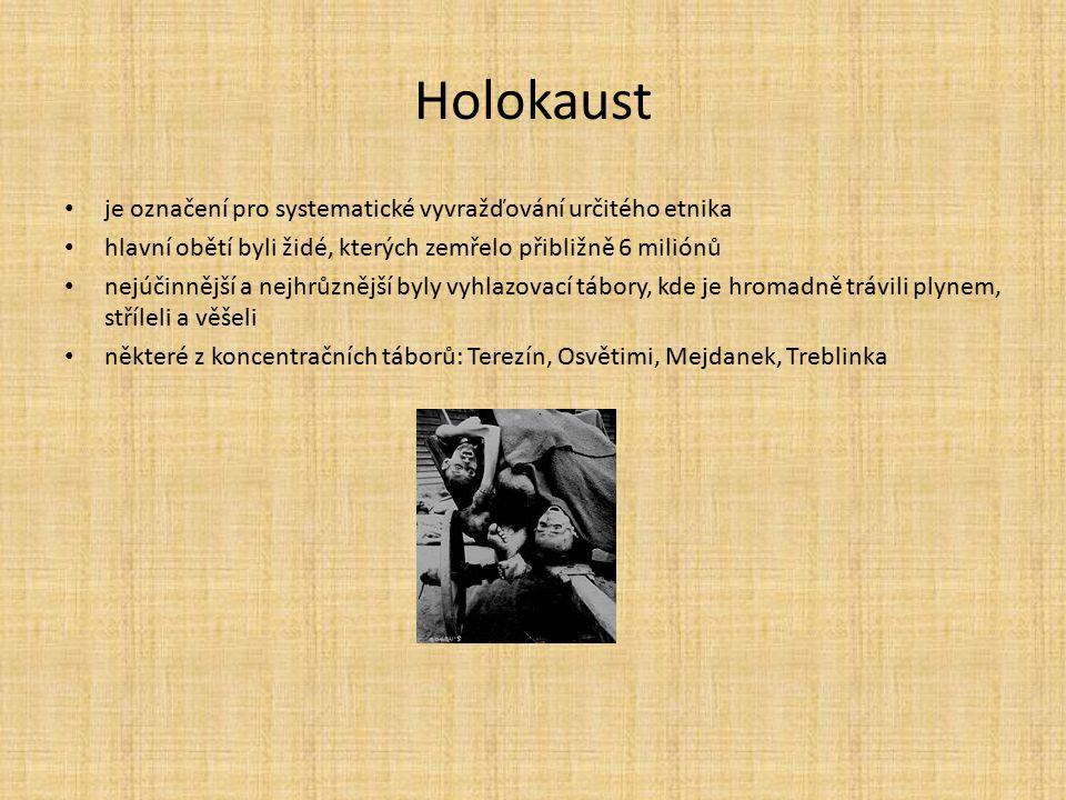 Holokaust je označení pro systematické vyvražďování určitého etnika