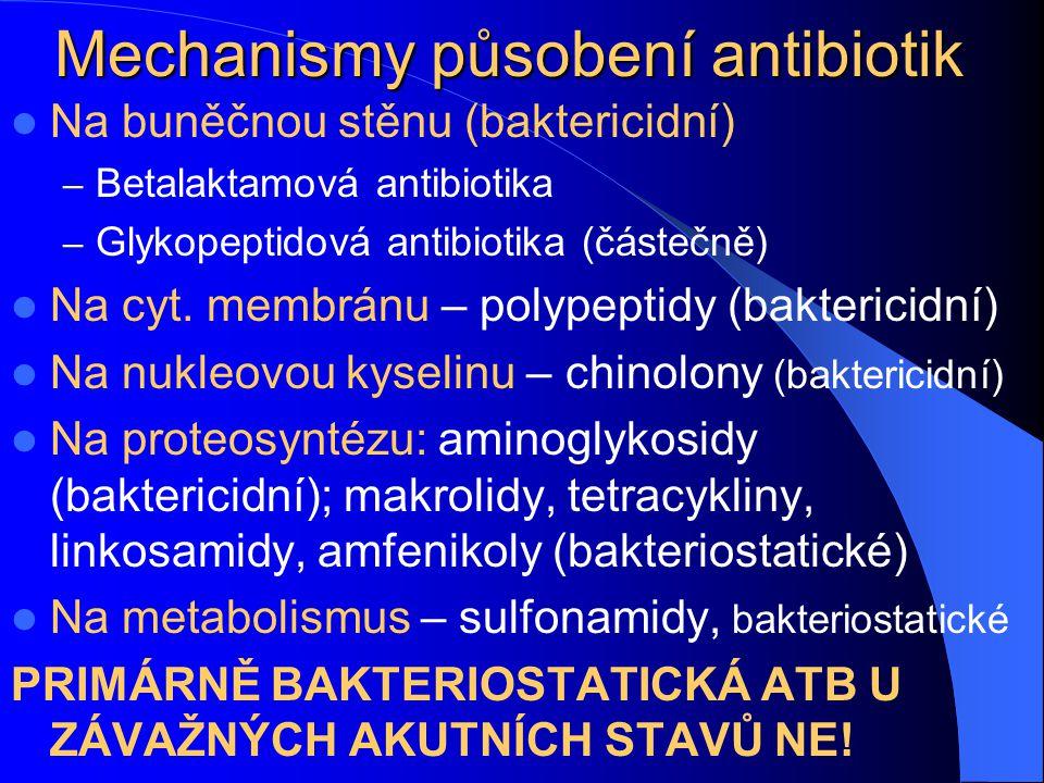 Mechanismy působení antibiotik