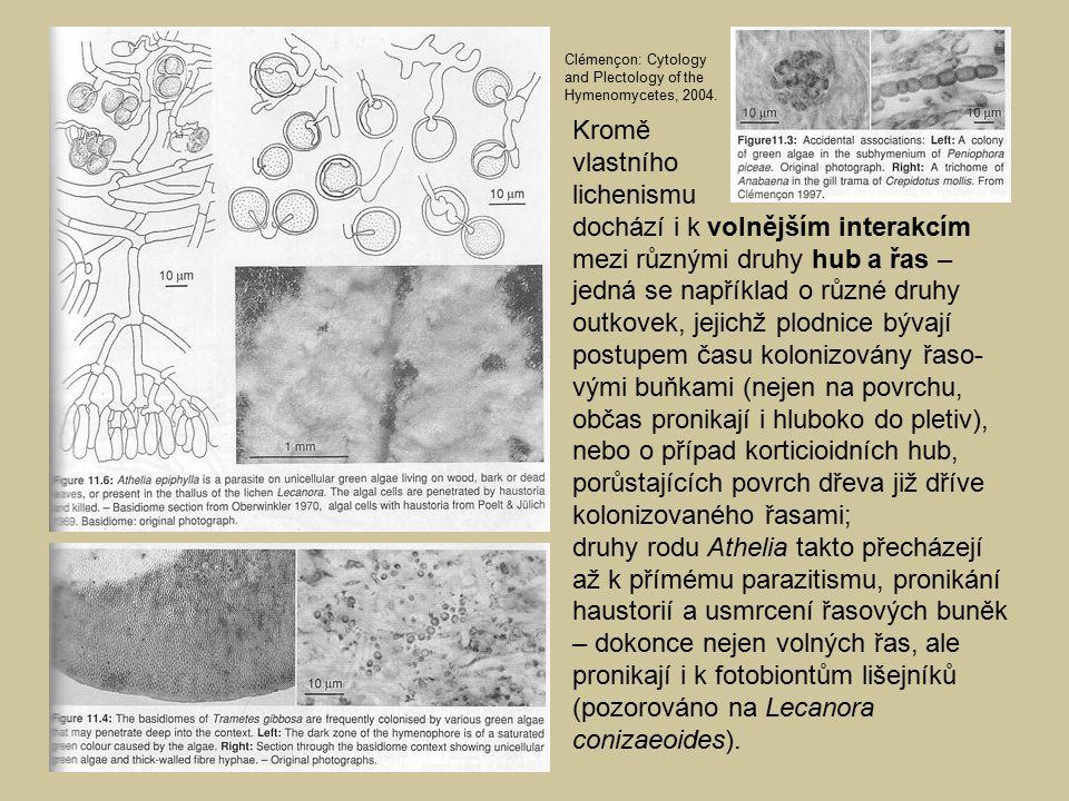 Kromě vlastního lichenismu