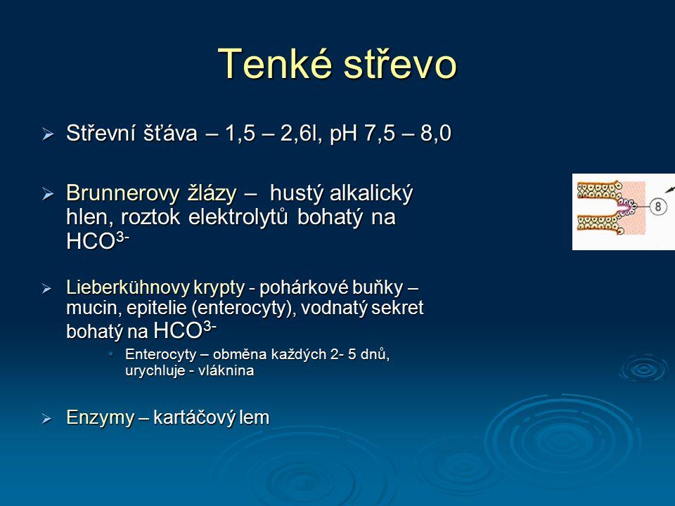 Tenké střevo Střevní šťáva – 1,5 – 2,6l, pH 7,5 – 8,0