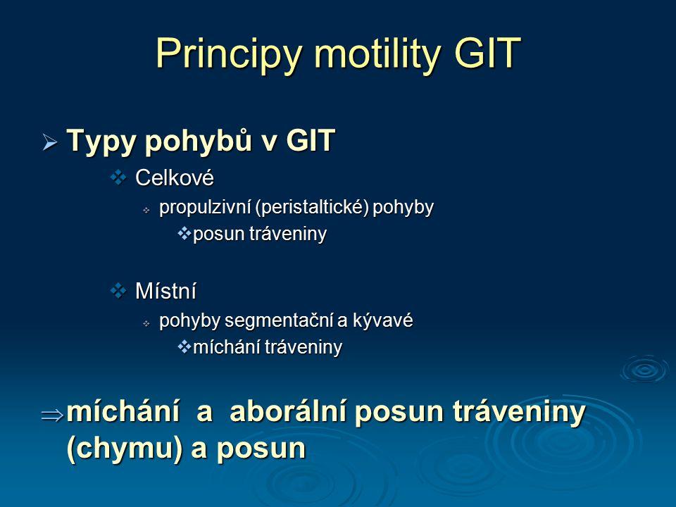 Principy motility GIT Typy pohybů v GIT