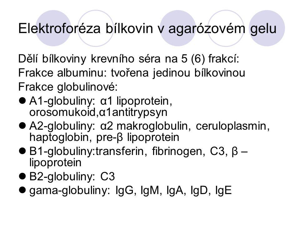 Elektroforéza bílkovin v agarózovém gelu
