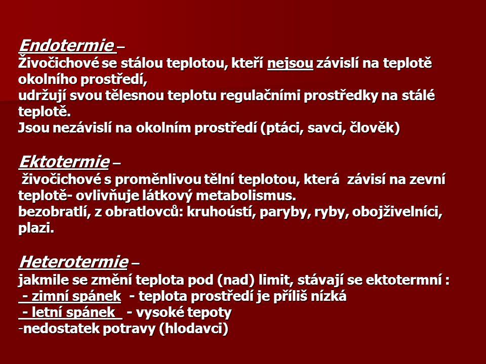 Endotermie – Ektotermie – Heterotermie –