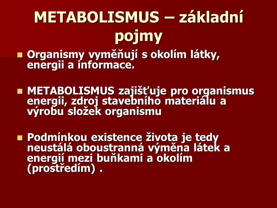 METABOLISMUS – základní pojmy
