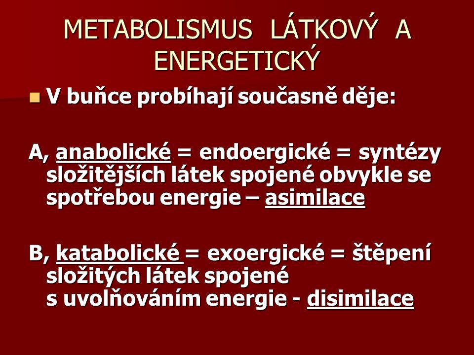 METABOLISMUS LÁTKOVÝ A ENERGETICKÝ