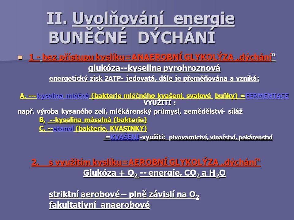 II. Uvolňování energie BUNĚČNÉ DÝCHÁNÍ