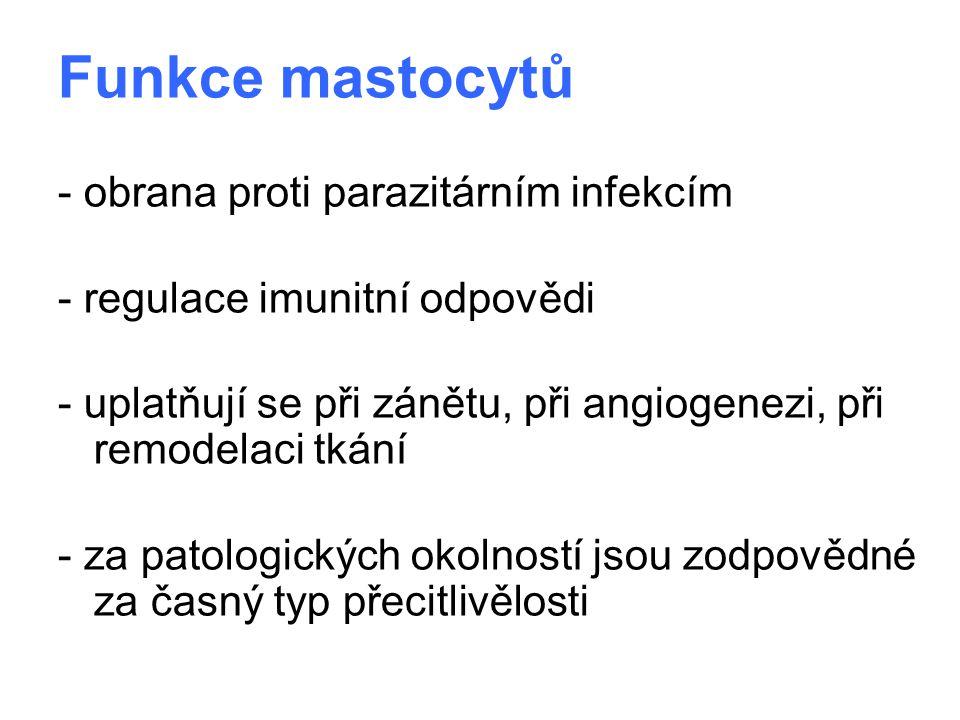 Funkce mastocytů - obrana proti parazitárním infekcím