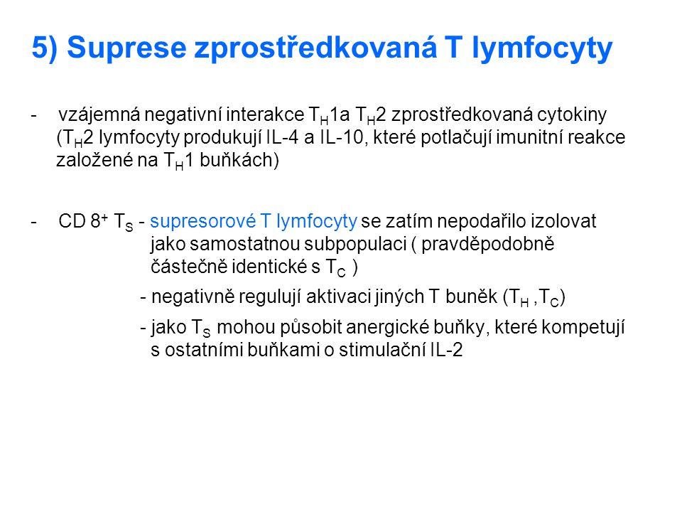 5) Suprese zprostředkovaná T lymfocyty