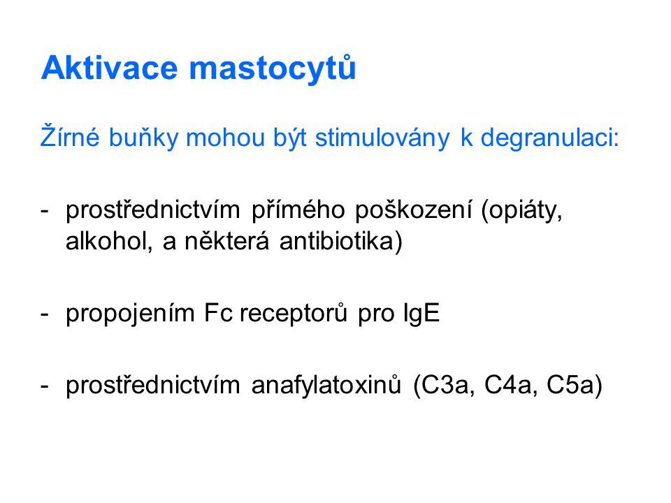 Aktivace mastocytů Žírné buňky mohou být stimulovány k degranulaci: