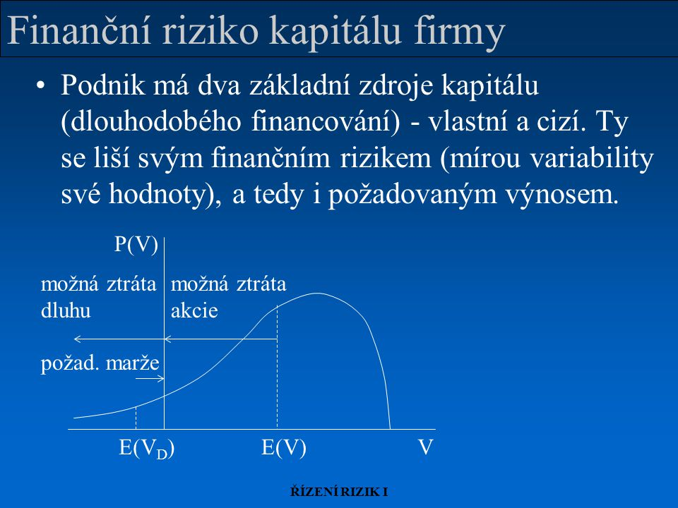 Finanční riziko kapitálu firmy