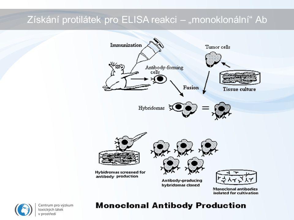 """Získání protilátek pro ELISA reakci – """"monoklonální Ab"""