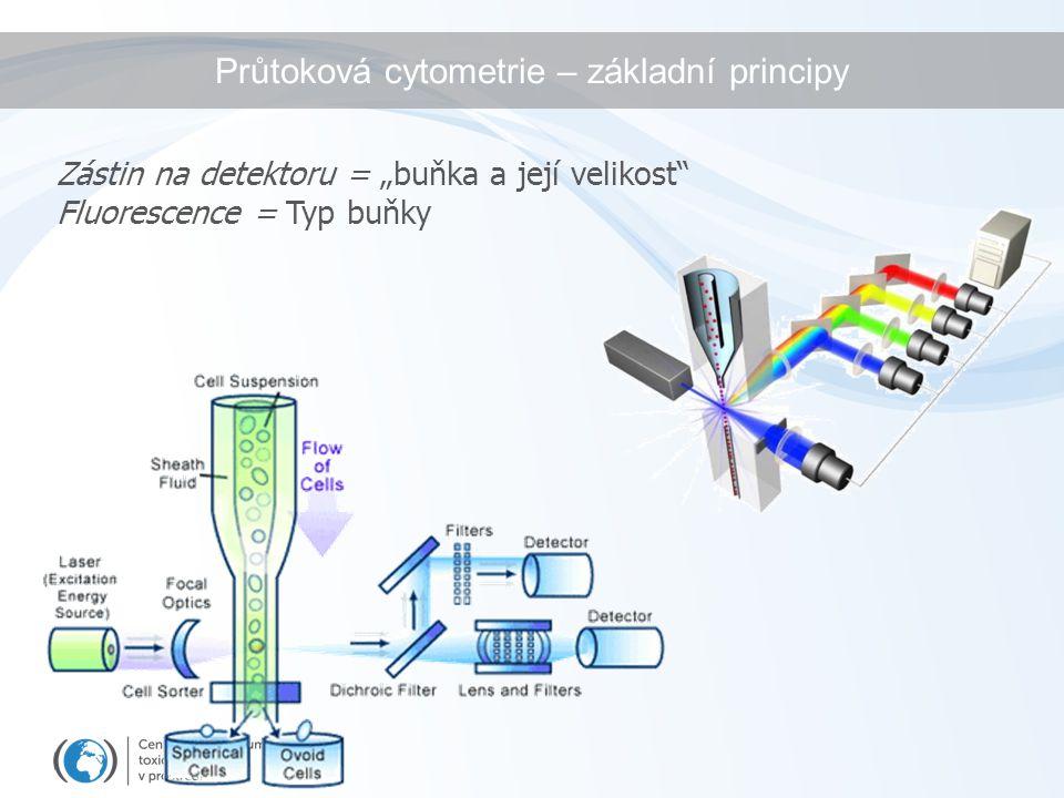 Průtoková cytometrie – základní principy