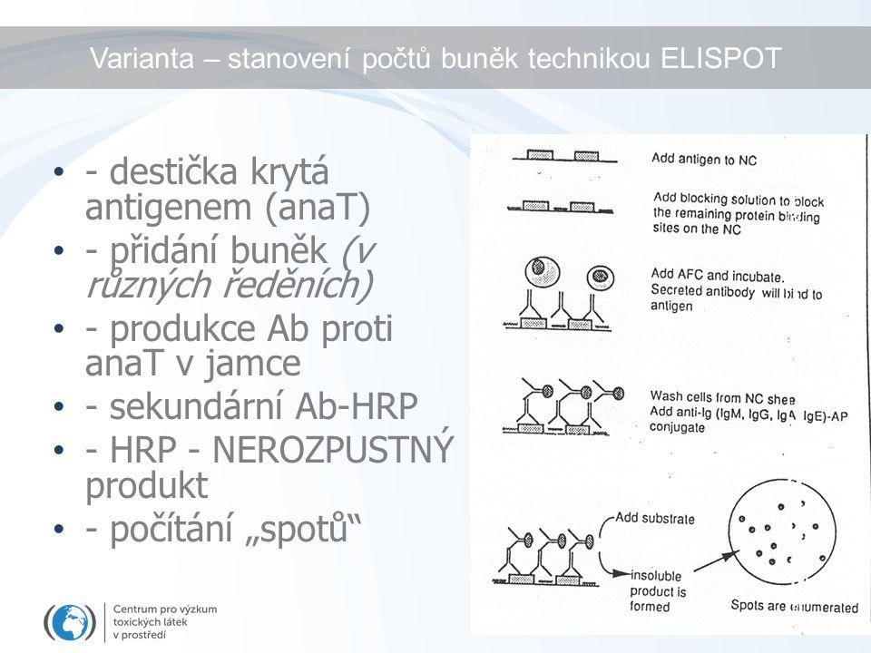 Varianta – stanovení počtů buněk technikou ELISPOT