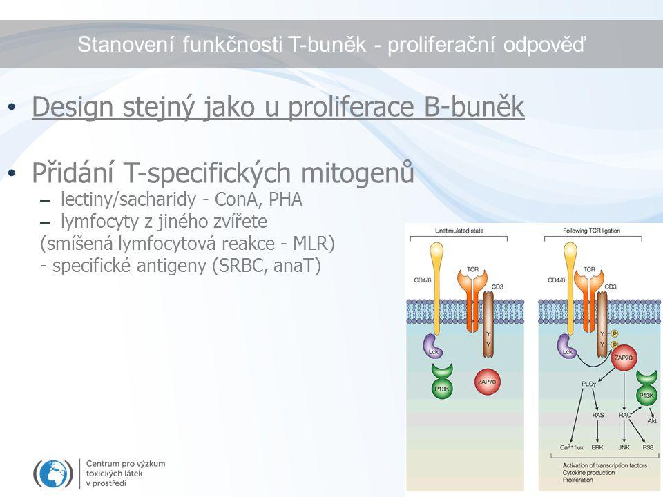 Stanovení funkčnosti T-buněk - proliferační odpověď