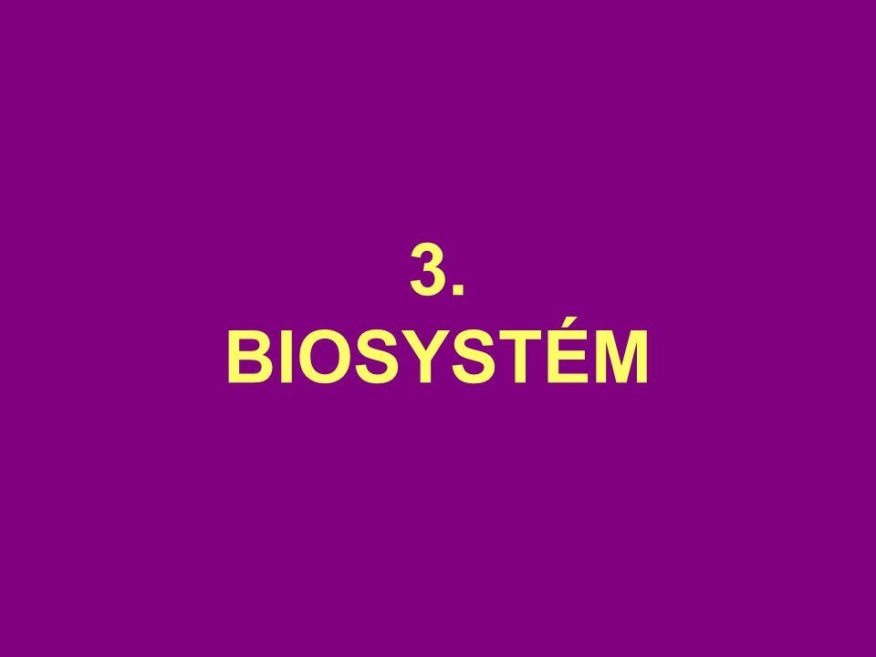 3. BIOSYSTÉM