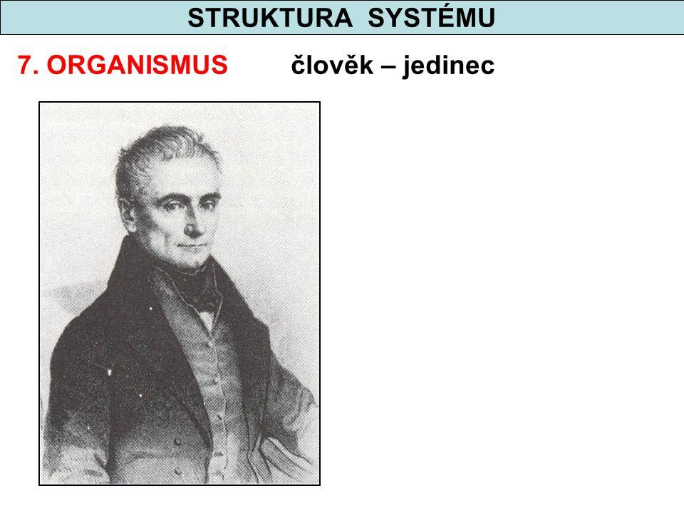STRUKTURA SYSTÉMU 7. ORGANISMUS člověk – jedinec