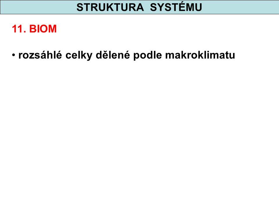 STRUKTURA SYSTÉMU 11. BIOM rozsáhlé celky dělené podle makroklimatu