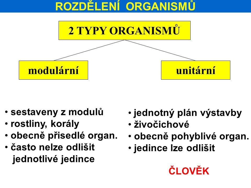 ROZDĚLENÍ ORGANISMŮ 2 TYPY ORGANISMŮ modulární unitární