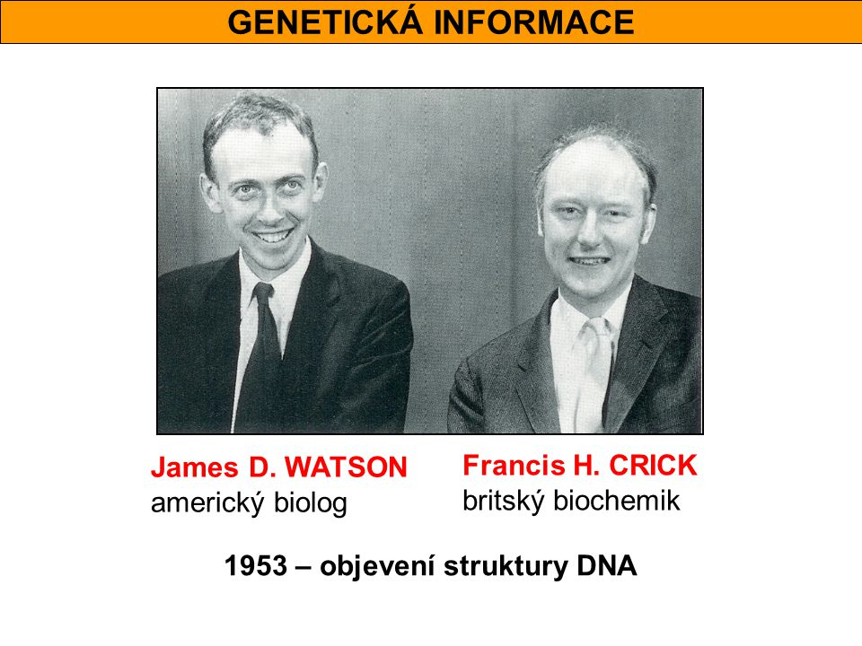 GENETICKÁ INFORMACE James D. WATSON Francis H. CRICK americký biolog