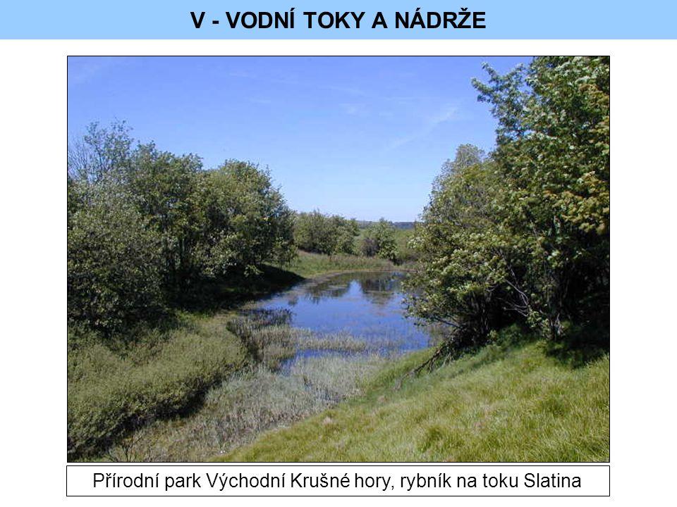 Přírodní park Východní Krušné hory, rybník na toku Slatina