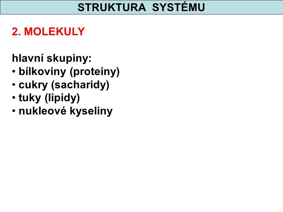 STRUKTURA SYSTÉMU 2. MOLEKULY. hlavní skupiny: bílkoviny (proteiny) cukry (sacharidy) tuky (lipidy)