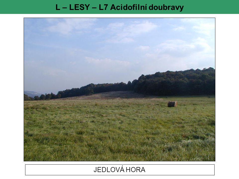 L – LESY – L7 Acidofilní doubravy