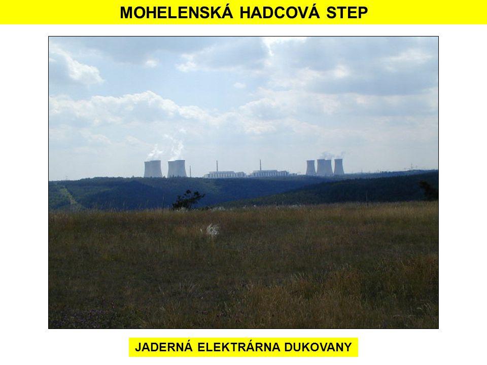 MOHELENSKÁ HADCOVÁ STEP