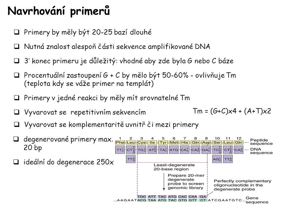 Navrhování primerů Primery by měly být 20-25 bazí dlouhé