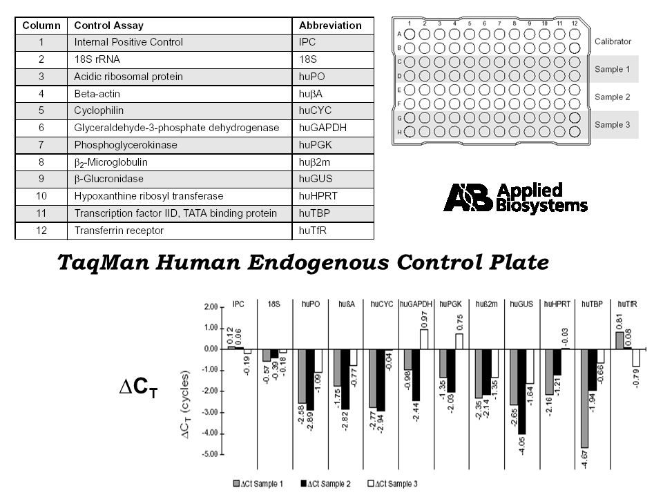TaqMan Human Endogenous Control Plate