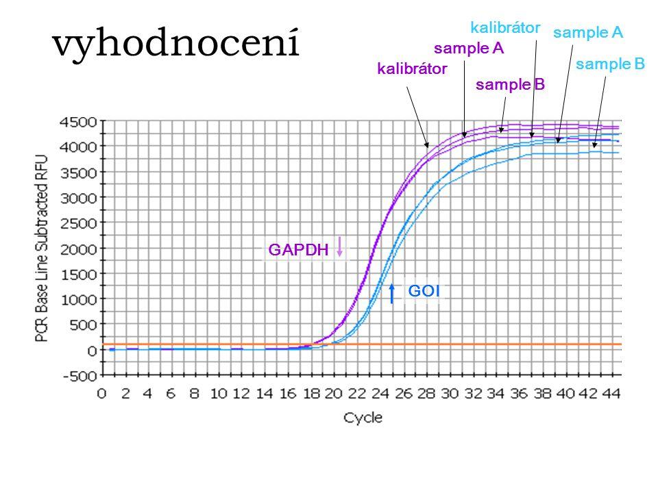 vyhodnocení kalibrátor sample A sample A sample B kalibrátor sample B