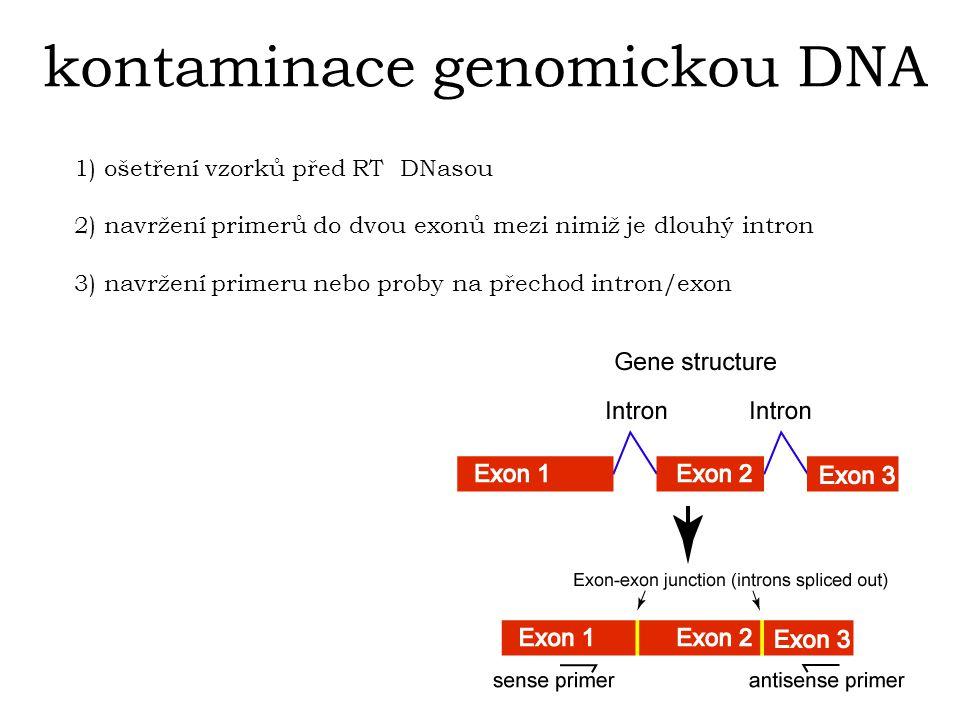 kontaminace genomickou DNA