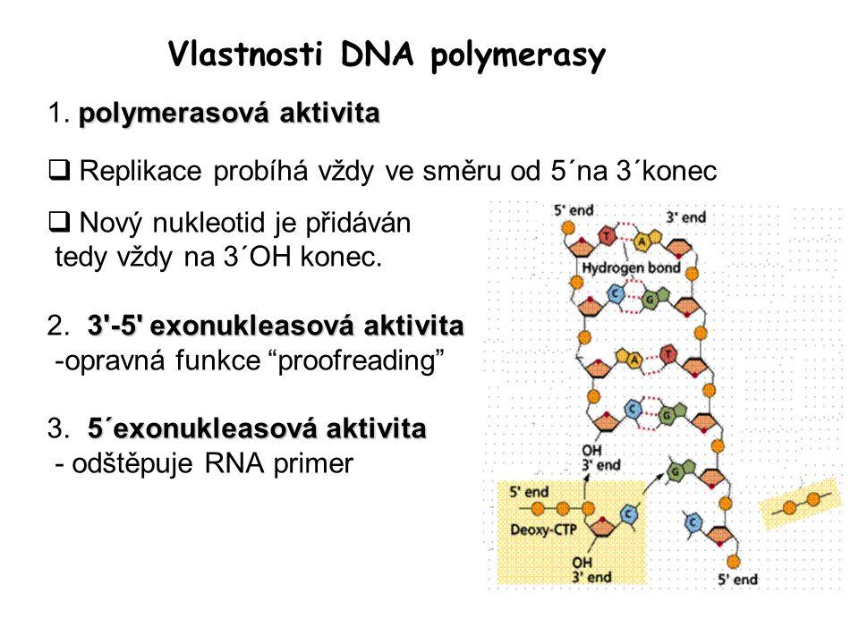 Vlastnosti DNA polymerasy