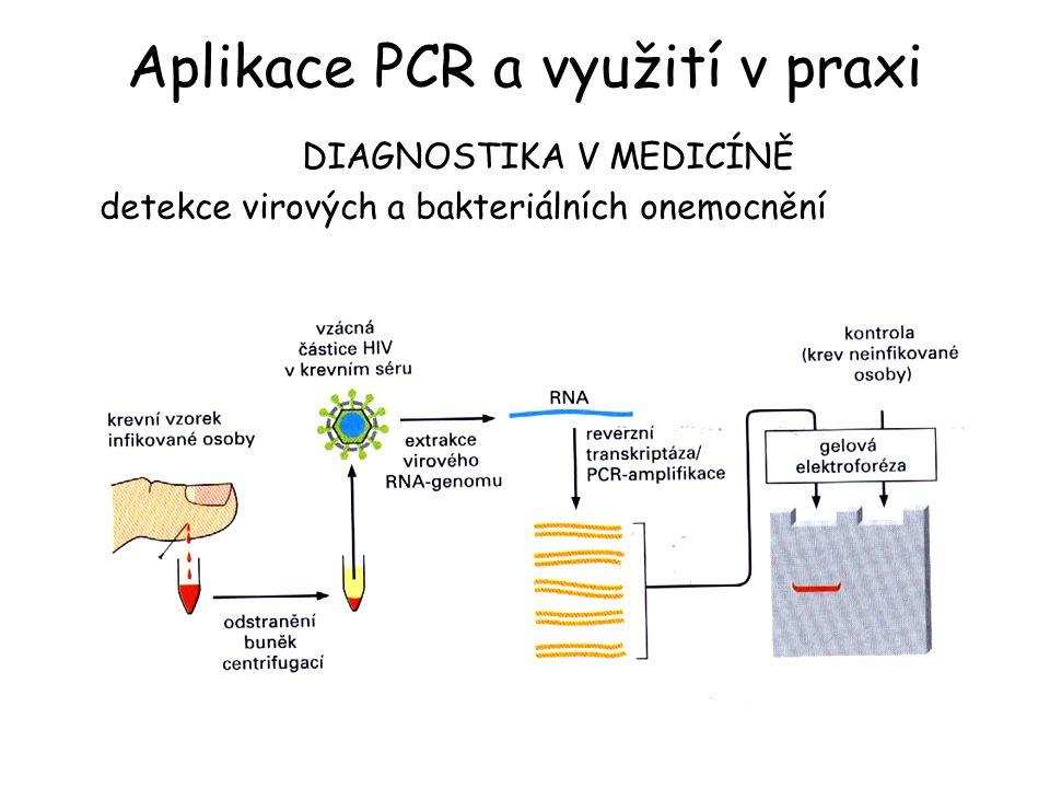 Aplikace PCR a využití v praxi
