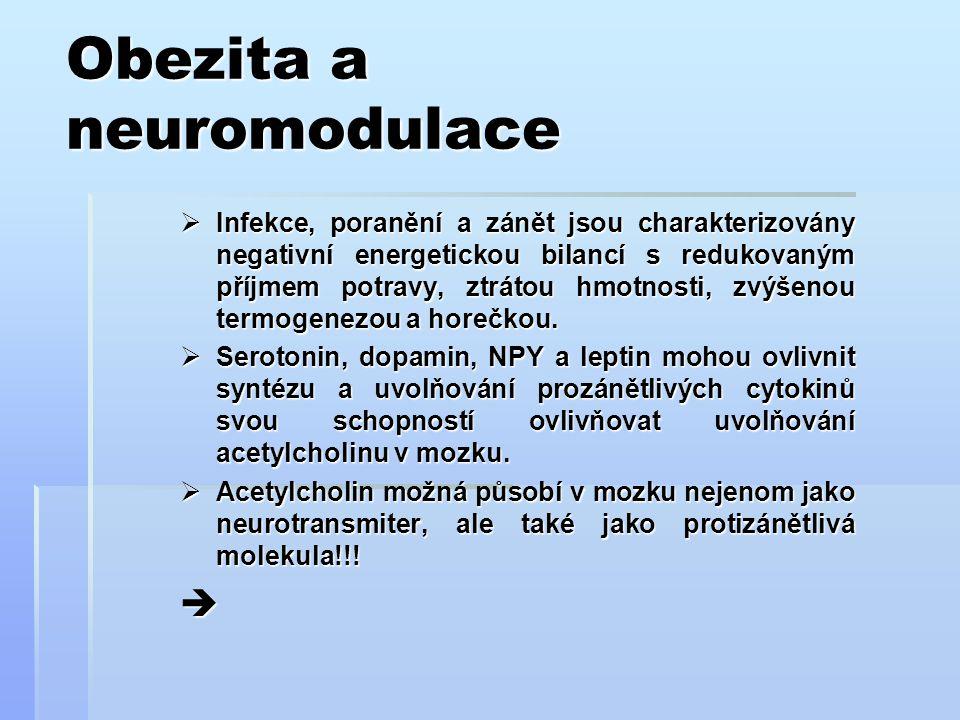 Obezita a neuromodulace