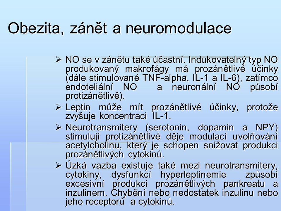 Obezita, zánět a neuromodulace
