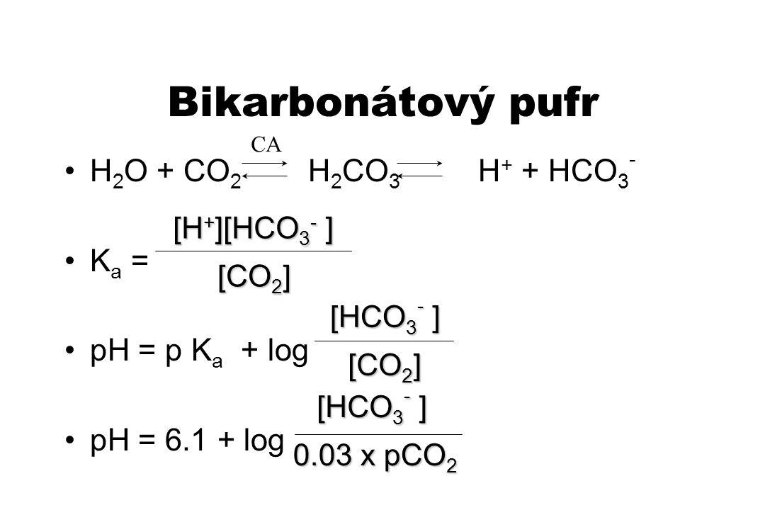 Bikarbonátový pufr H2O + CO2 H2CO3 H+ + HCO3- Ka = pH = p Ka + log