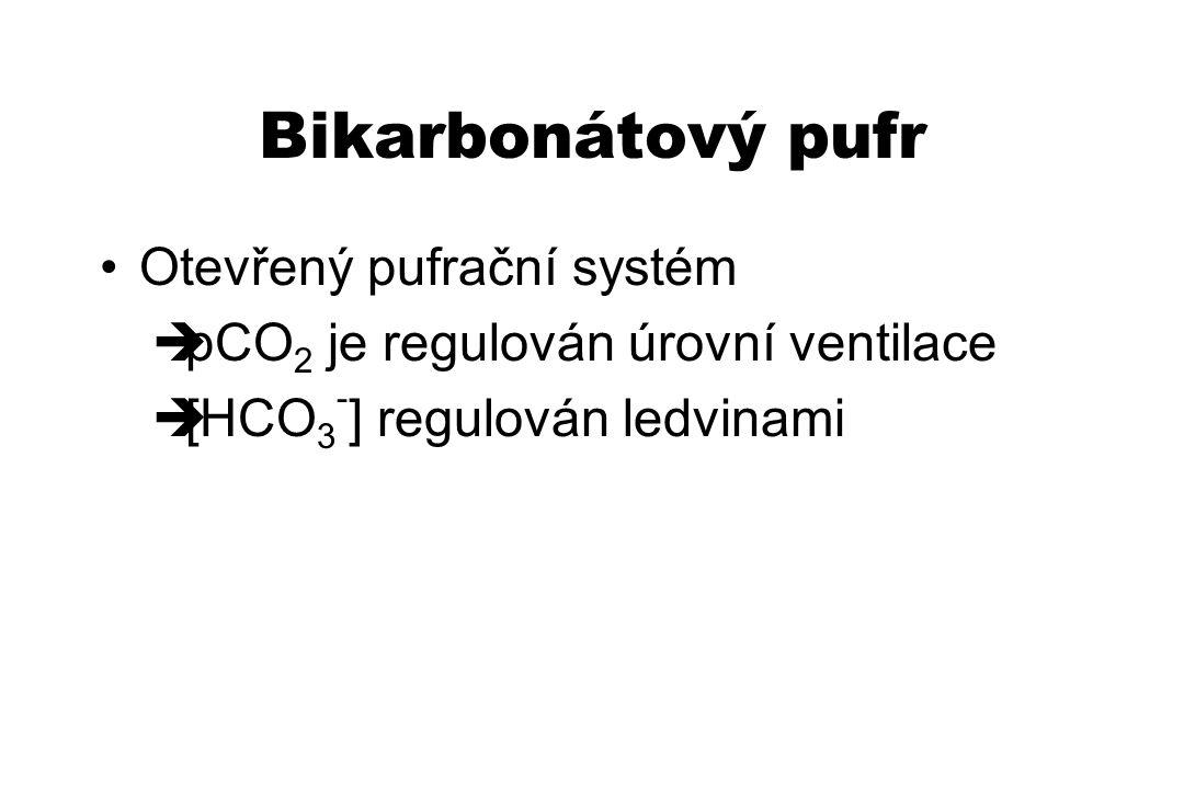 Bikarbonátový pufr Otevřený pufrační systém