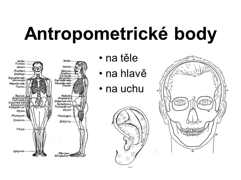Antropometrické body na těle na hlavě na uchu