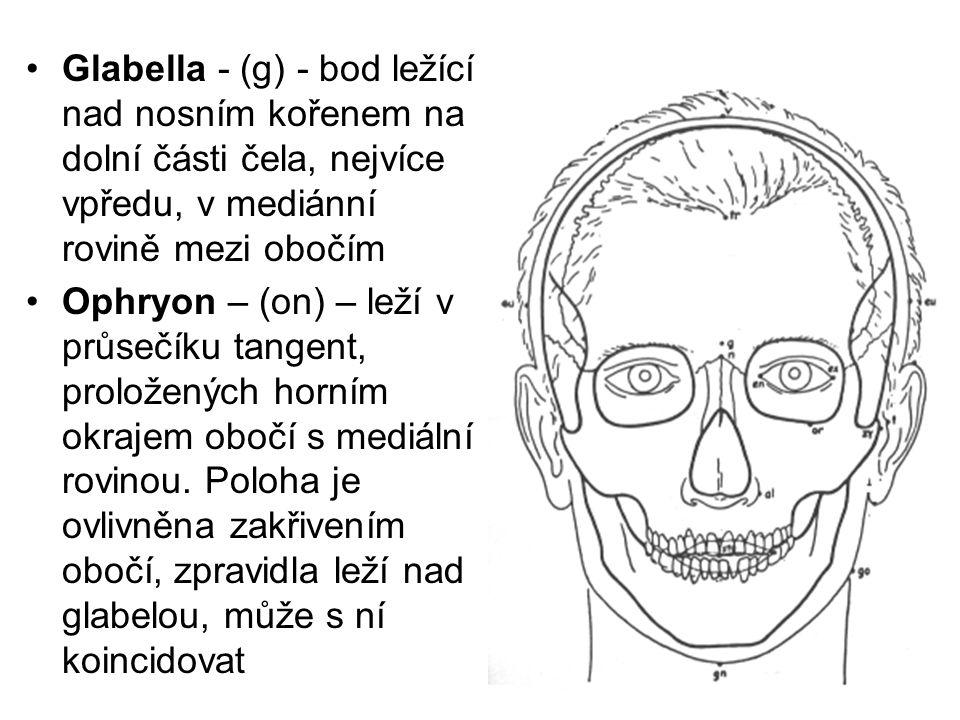 Glabella - (g) - bod ležící nad nosním kořenem na dolní části čela, nejvíce vpředu, v mediánní rovině mezi obočím