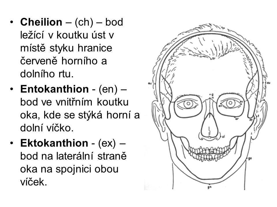 Cheilion – (ch) – bod ležící v koutku úst v místě styku hranice červeně horního a dolního rtu.