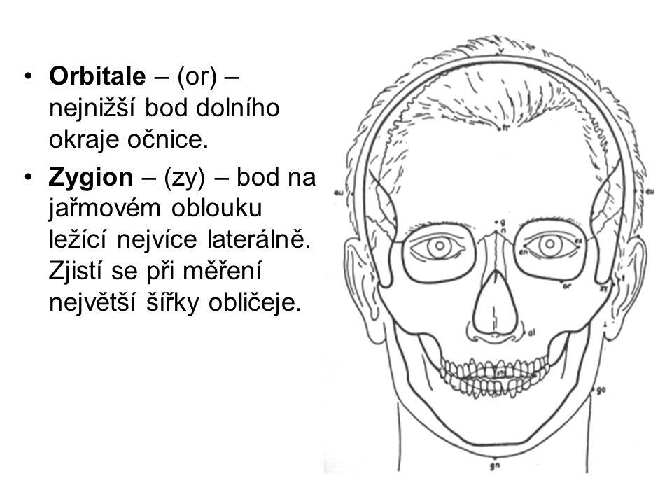Orbitale – (or) – nejnižší bod dolního okraje očnice.