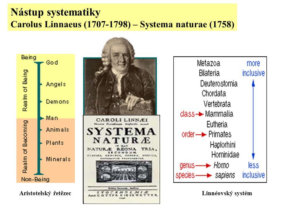 Nástup systematiky Carolus Linnaeus (1707-1798) – Systema naturae (1758) Aristotelský řetězec.