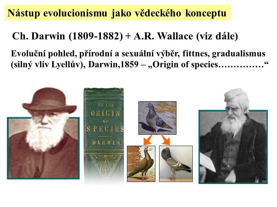 Nástup evolucionismu jako vědeckého konceptu